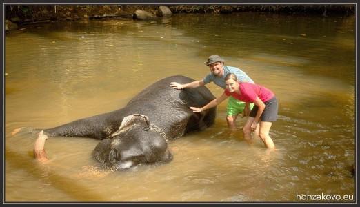 Společně se slonem
